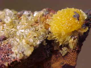 Paradamite With Legrandite Crystal Cluster - Mexico